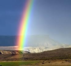 Image result for rainbows craig lock