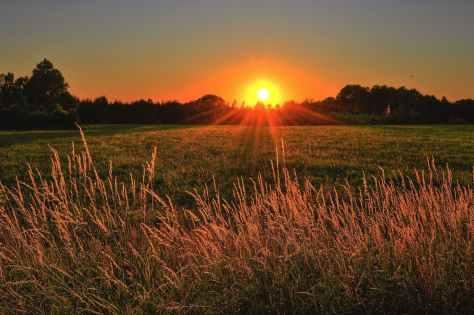 SUN by Johnathan Petterson pexels-photo-1237119